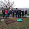 Activitate de voluntariat desfășurată la Soltănești